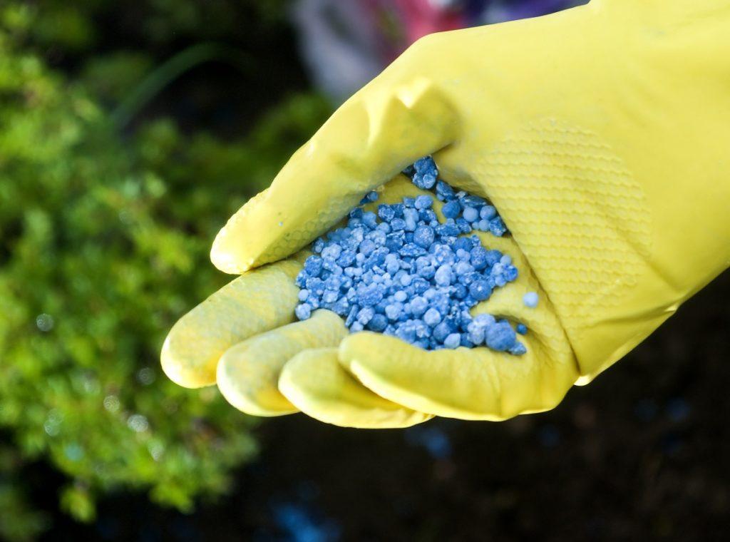 Гранулированные удобрения: это сухие гранулы чистого удобрения, которые можно смешивать с почвой в горшке